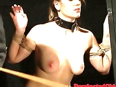 Busty submissive vixen jizzed on pest