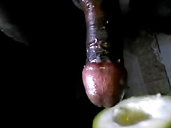 Desi Boy Carnal knowledge With Bottle Gourd Feeling Awesome
